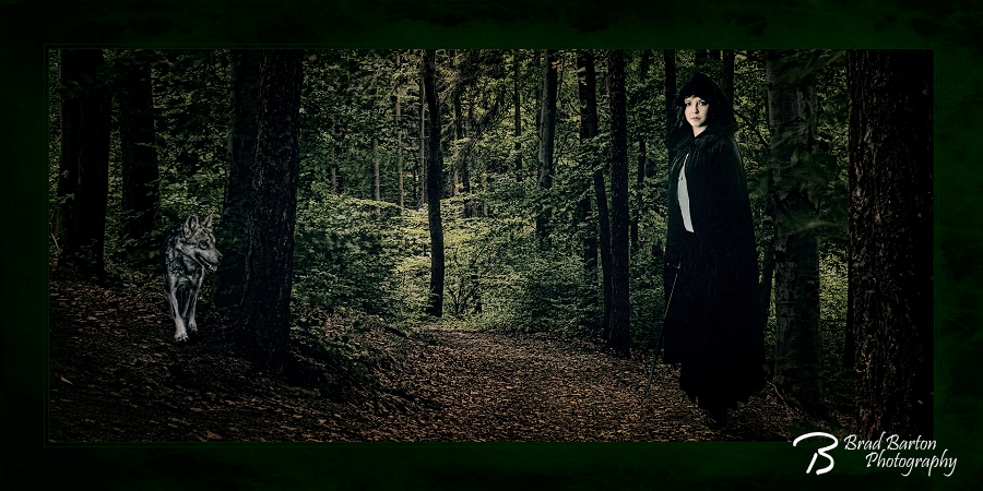 Dallas Conceptual Photography - Queen of the Forest